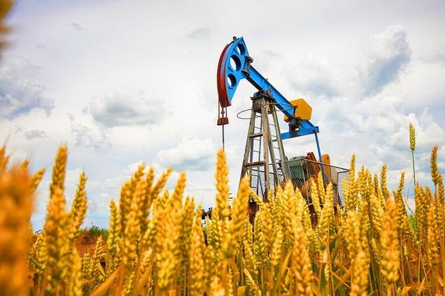 social-media-oil-gas-companies